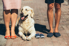 Крупный план женских и мужских ног в вскользь ботинках Стоковое Фото