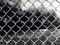 Крупный план звена цепи в черно-белом Стоковое Изображение RF