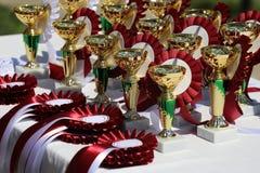 Крупный план золотых трофеев и лент для конноспортивных победителей Стоковое Фото