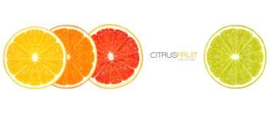 Крупный план здоровых свежих цитрусовых фруктов дизайн шаблона стоковые изображения rf