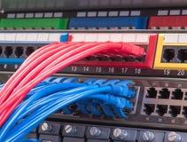 Крупный план кабеля сети с волокном оптически Стоковые Изображения