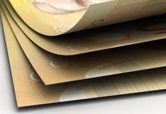 Крупный план канадского доллара Стоковая Фотография