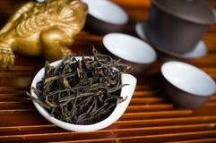 Крупный план китайца чая Стоковое Изображение RF