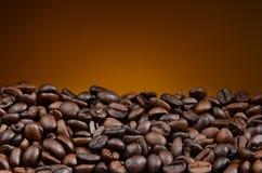 Крупный план кофейного зерна Стоковая Фотография