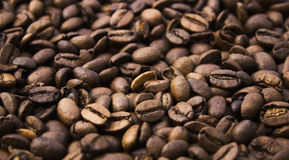 Крупный план кофейных зерен на деревянной предпосылке Стоковые Изображения
