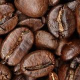 Крупный план кофейных зерен предпосылки текстуры Стоковые Изображения RF