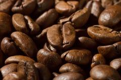 Крупный план кофейных зерен с фокусом на одном стоковые изображения