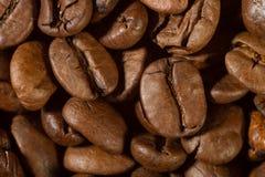 Крупный план кофейных зерен с фокусом на одном Стоковое фото RF