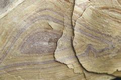 Крупный план красочного песчаника пустыни Стоковые Фото