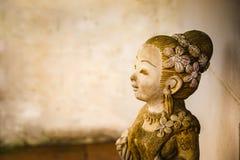 Крупный план кукол глины Стоковые Изображения