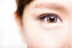 Крупный план молодых красивых глаз женщины стоковые фотографии rf