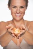 Крупный план на раковине моря в руках усмехаясь женщины стоковые фотографии rf
