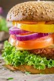 Крупный план домодельного бургера сделанный от свежих овощей Стоковые Изображения RF