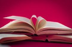 Крупный план открытых книг на покрашенной предпосылке Стоковые Фотографии RF