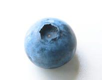 Крупный план одной чувствительной и свежей голубики Стоковая Фотография