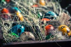 Крупный план пасхальных яя colourfull с сеном и пер Стоковые Фото