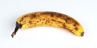 Крупный план перезрелого австралийского банана Стоковые Фото