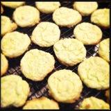 Крупный план печений сахара лимона Стоковое Фото
