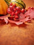 крупный план предпосылки осени красит красный цвет листьев плюща померанцовый Стоковые Изображения