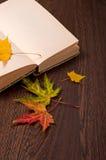 крупный план предпосылки осени красит красный цвет листьев плюща померанцовый белизна осени изолированная принципиальной схемой Стоковое Изображение