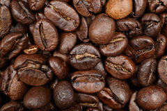 Крупный план предпосылки текстуры кофейных зерен Стоковые Изображения