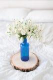 Крупный план пука белых цветков в стеклянной бутылке Стоковые Фото