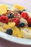 Крупный план плиты плодоовощ с ягодами лета Стоковые Изображения RF