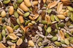 Крупный план различных семян Стоковые Изображения