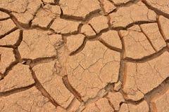 Крупный план района неорошаемого земледелия Стоковая Фотография RF
