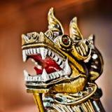 Крупный план дракона головной Стоковые Изображения
