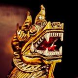 Крупный план дракона головной Стоковое Изображение RF