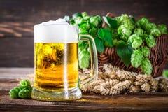 Крупный план свежего и холодного пива в стекле Стоковая Фотография