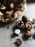 Крупный план свежего органического гриба cremini шиитаке Стоковая Фотография RF