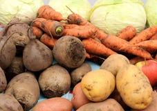 Крупный план свеже сжатых овощей Стоковое Изображение