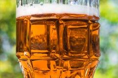 Крупный план светлого пива в большом стекле, спирте Стоковые Изображения RF