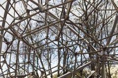 Крупный план сети веревочек и узлов Стоковое Фото