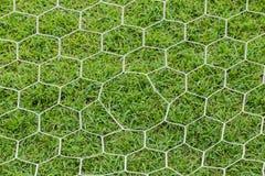 Крупный план сети цели футбола Стоковое фото RF