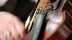Крупный план скрипки видеоматериал