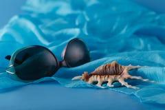 Крупный план снял раковины Желтого моря кладя на голубой шелк Стоковые Фото