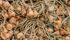 Крупный план собрания больших рыболовных сетей Стоковые Изображения