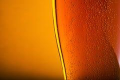 Крупный план стекла пива Стоковые Изображения RF
