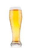 Крупный план стекла пива Стоковое Фото
