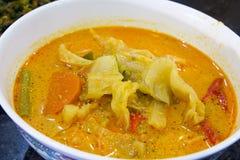 Крупный план тарелки Vegetable супа Nonya Sayur Lodeh Стоковая Фотография RF