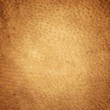 Текстура Брайна кожаная Стоковые Изображения RF