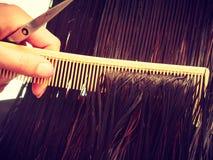 Крупный план темных влажных волос, гребня и ножниц парикмахерских услуг Стоковое Фото