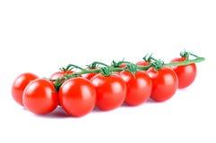 Крупный план томатов очень вкусных красных зрелых вишни на белизне Стоковое Изображение