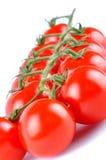 Крупный план томатов очень вкусных красных зрелых вишни на белизне Стоковая Фотография