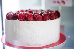 Крупный план торта сливк и поленики Стоковые Изображения RF