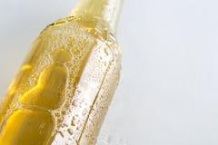 Крупный план холодного пива Стоковые Изображения RF