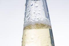 Крупный план холодного пива Стоковое Изображение RF